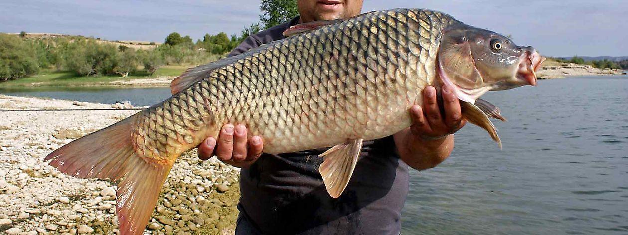 Break your personal records - Ceiton Bay Visvakantie Ebro