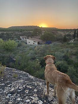 overlooking the beauty Ceitón visvakanties off grid huisje huren